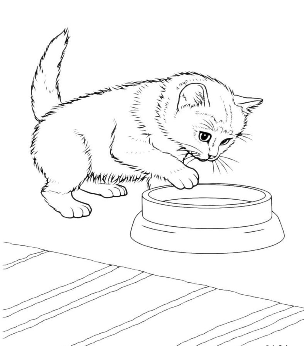 раскраска для детей кот опускает лапу в мисочку коты