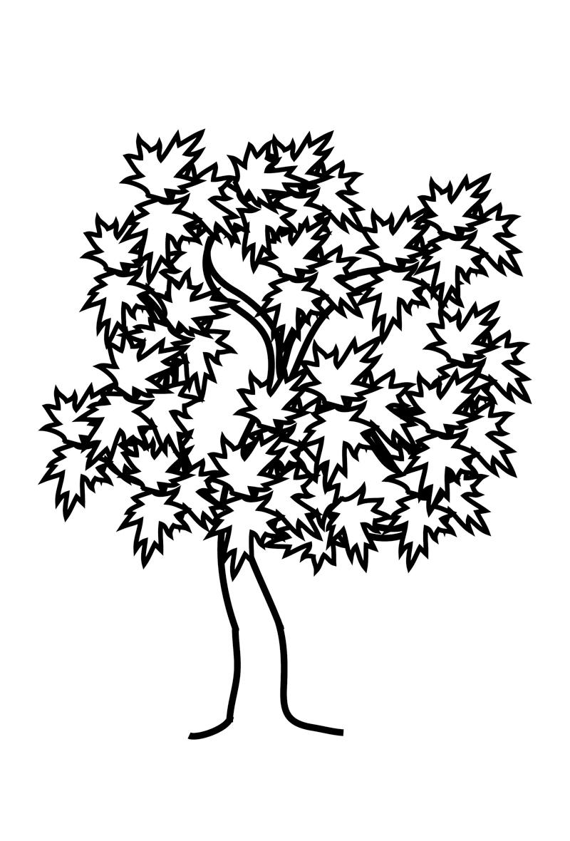 картинки с контурным изображением деревьев можно