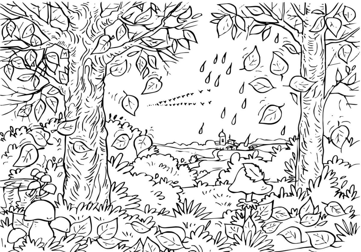 Картинки пейзажи природа разукрашки на лист а4, разводе